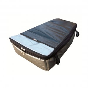 Mission Fully Insulated Fish Bag