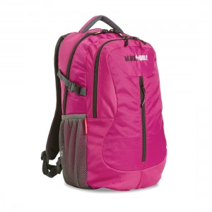Blackwolf Dart Daypack