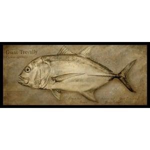 Fishoz Framed Fish Print