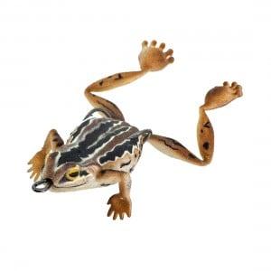 Chasebaits Bobbin Frog 65mm Lure